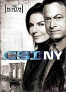 CSI: NY - Complete Season 9: The Final Season