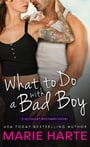 What to Do with a Bad Boy (The McCauley Brothers #4)