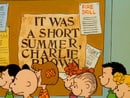 It Was a Short Summer, Charlie Brown