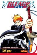 Bleach, Volume 01