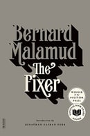 The Fixer: A Novel