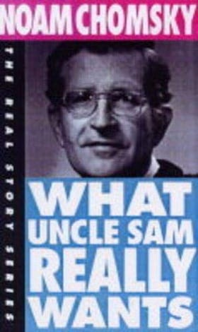 What Uncle Sam Really Wants (The Real Story Series)